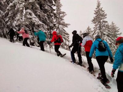 Зимний поход в лес